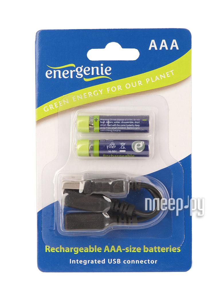 Аккумулятор AAA - Energenie EG-BA-002 550 mAh Ni-Mh USB (2 штуки)  Pleer.ru  650.000
