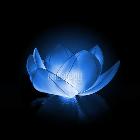 Небесный фонарик желаний Nebofon Водная лилия Blue  Pleer.ru  235.000