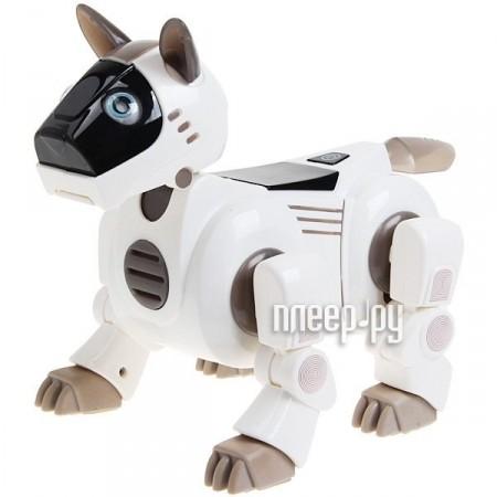 Игрушка Smart Dog DuoDuo 2079  Pleer.ru  1599.000