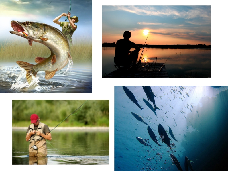 сонник мужчина ловит большую рыбу