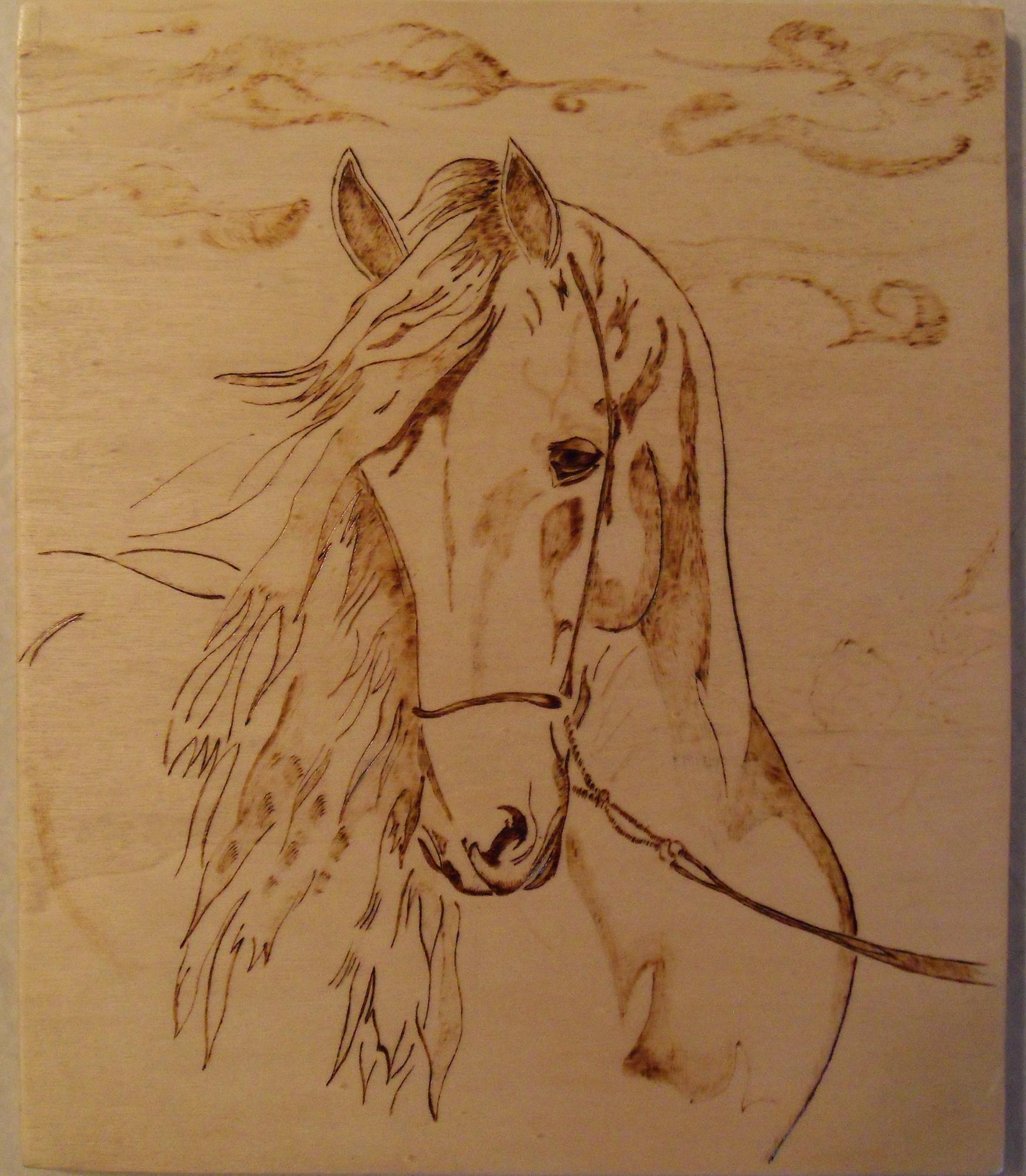 Рисунки для пирографий