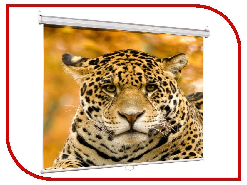 Купить Экран Lumien Eco Picture 160x160cm Matte White LEP-100105, Eco Picture 160х160cm