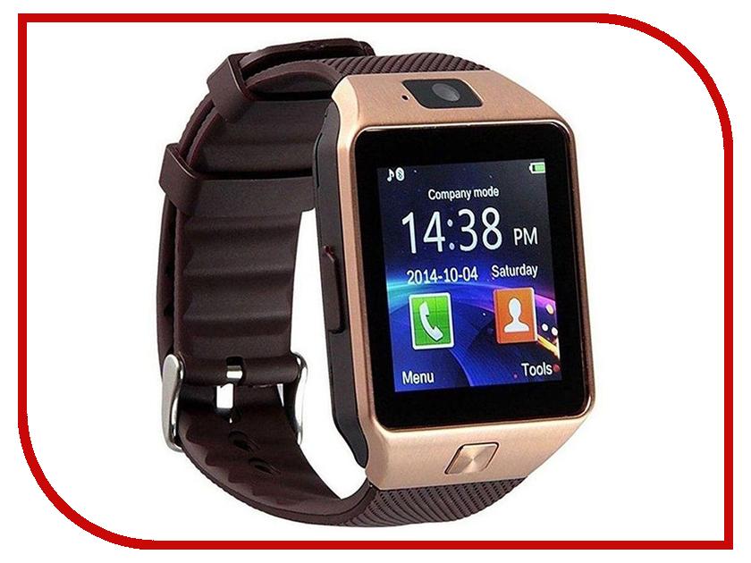 Купить Умные часы ZDK DZ09 Bronze