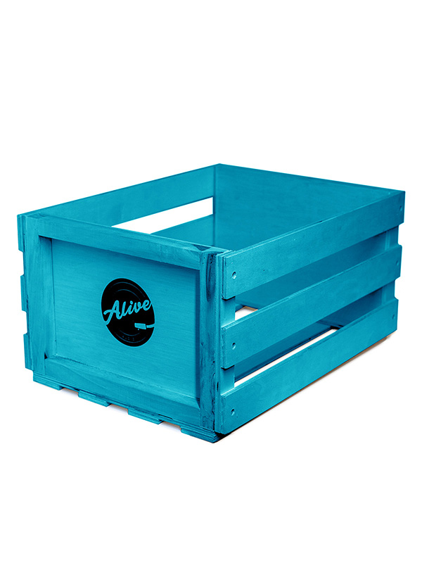 Фото - Аксессуар Ящик для 80 пластинок Alive Audio Nature Blue AABX-085 ящик зимний teho