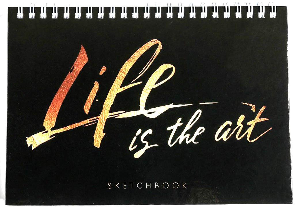 Скетчбук ArtFox Life is The Art А5 80 листов 4864092