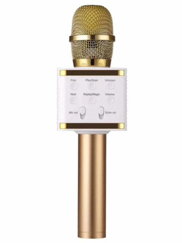 Система караоке Activ V7 Gold 125491