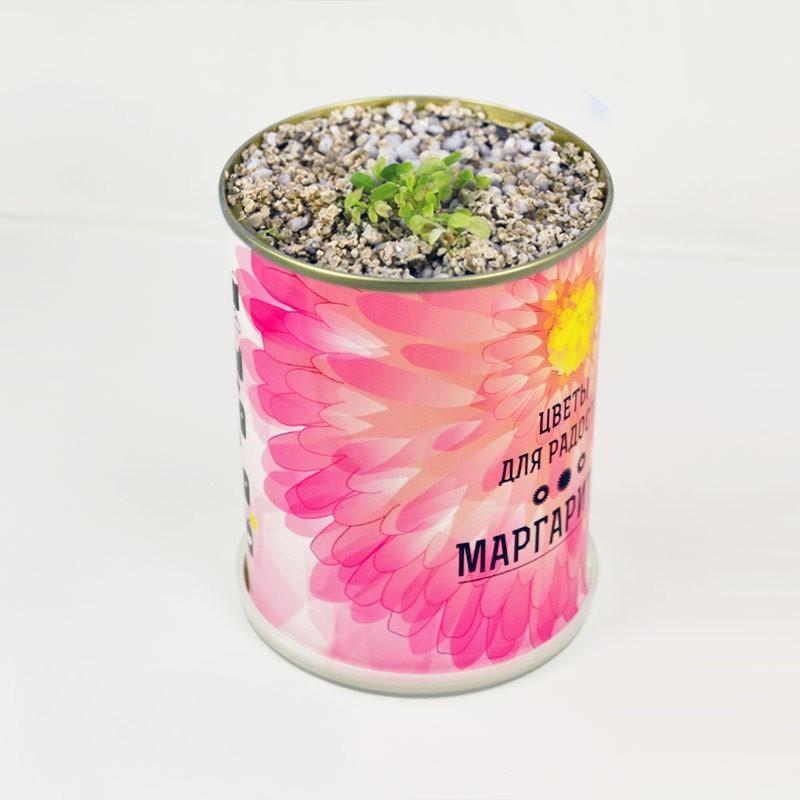 Купить цветы в банке в москве